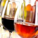 Annual Wine & Food Tasting Fundraiser