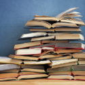 Annual Mini-BIG Book Sale: August 24